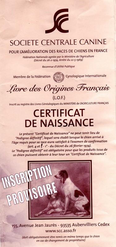 centrale canine certificat de naissance